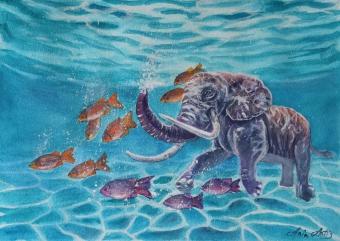 Schwimmender Elefant, Aquarelle 26x36 cm