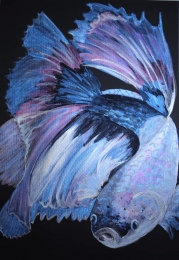 Regenbogenfisch,  Aquarelle, 24x32 cm